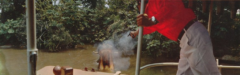 A Jungle Cruise skipper shoots at a hippo.