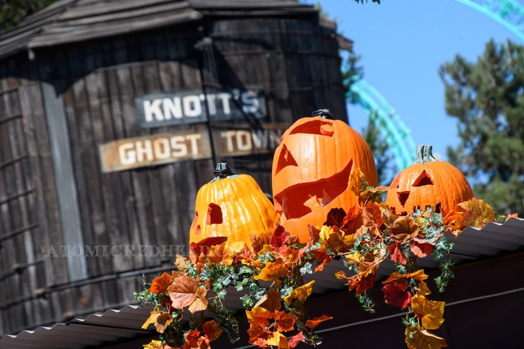 Carved pumpkins and leaves top a stand with the Ghost Town watertower in the background.