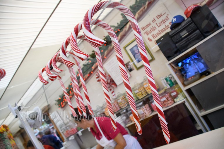Red and white candy canes of various sizes hang on the window wall between the shop and the candy making space.