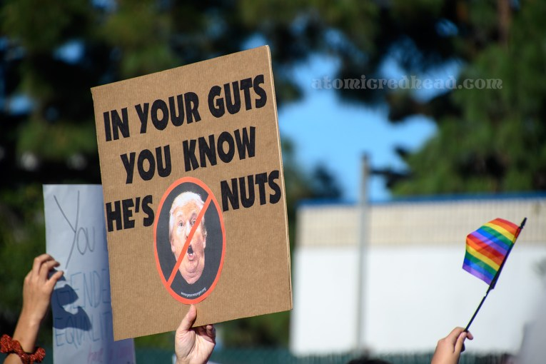 "A marcher holds a sign featuring the face of Donald Trump surrounded by a red circle with a slash through it, it reads ""In your guts you know he's nuts"""