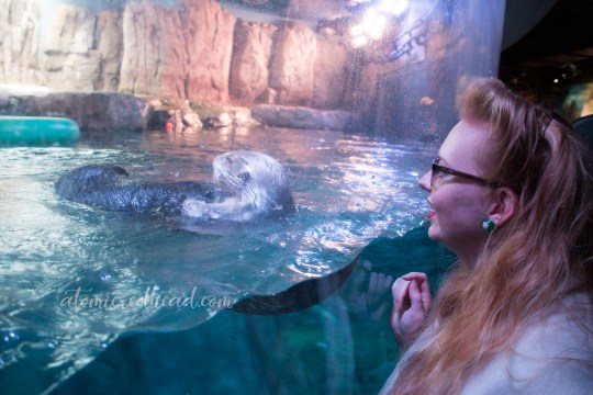 Myself looking at a sea otter through a massive floor to ceiling window.