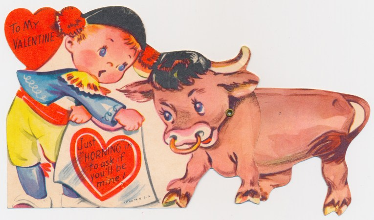 """A little boy dressed as a matador tempts a bull. Text reads """"To my Valentine: Just 'horning' in to ask if you'll be mine!"""""""