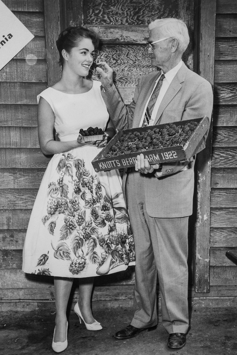 A black and white photo of a young brunette wearing a white dress with boysenberries painted on the skirt, Walter Knott stands next to her in a suit, holding a crate of boysenberries.