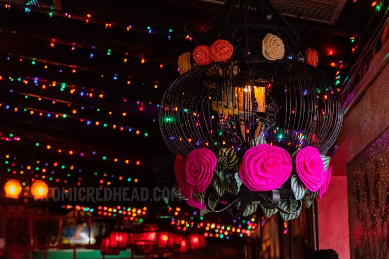 Multi-colored lights hang across the ceiling.