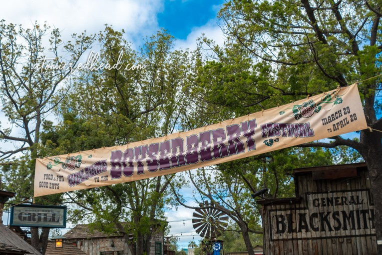 "A banner stretched across the streets of Ghost Town reads ""Welcome to the Boysenberry Festival"""