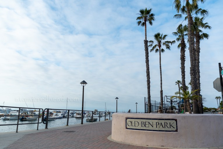 """Old Ben Park, along the shores of Avalon. Tall palm trees stand behind a short tan colored wall with tiles reading """"Old Ben Park"""""""