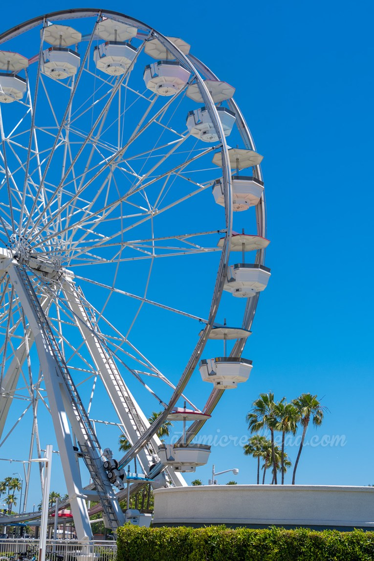 A tall white ferris wheel.