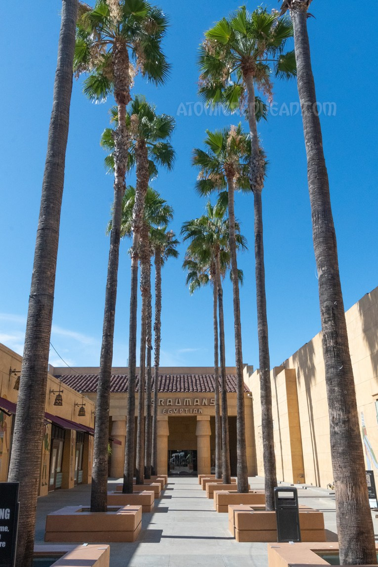The forecourt of the Egyptian, which features tall palm trees lining a sandstone colored open air area.