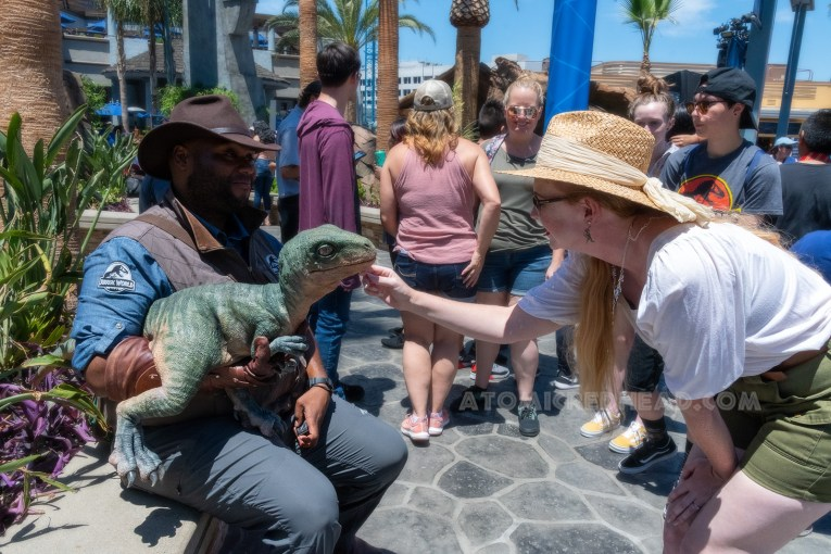 "A ""Jurassic World employee"" holds a baby raptor of Guests to pet, I kneel down and stroke its chin."