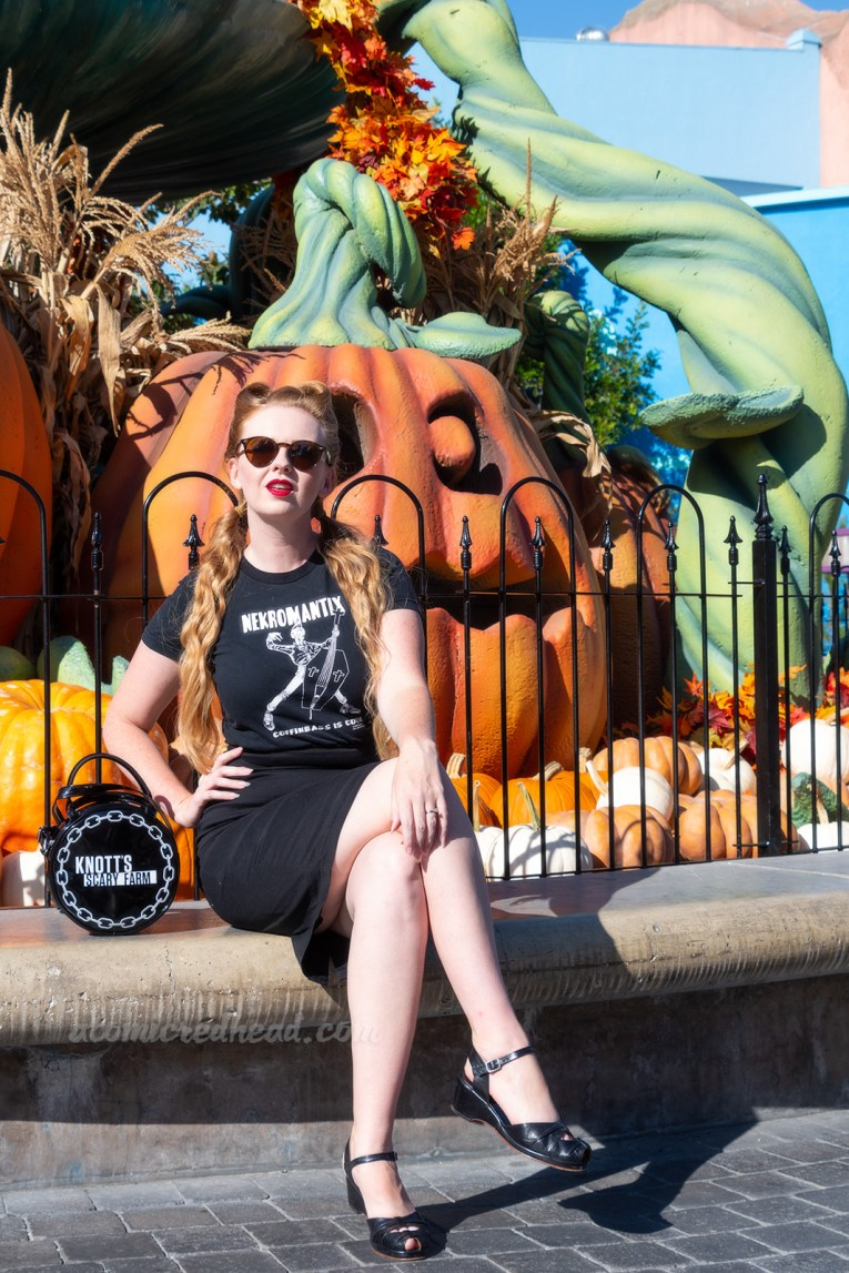 "Myself, wearing a black t-shirt with a zombie playing an upright bass shaped like a coffin, and text reading ""Nekromatix Coffinbass is Cool"" and a black pencil skirt, seated in front of a fountain filled with massive jack o'lanterns."