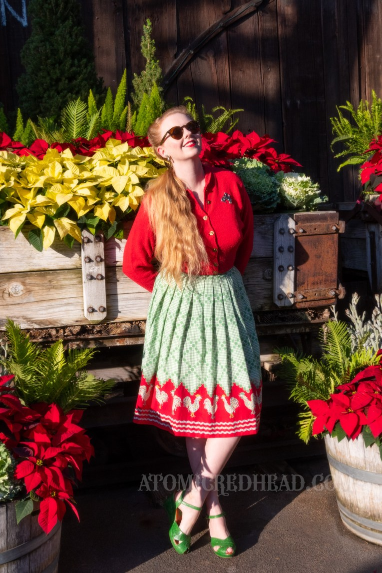 Myself, standing in front of a train loaded with poinsettias, wearing a red sweater and a red and green skirt with chickens printed at the bottom.