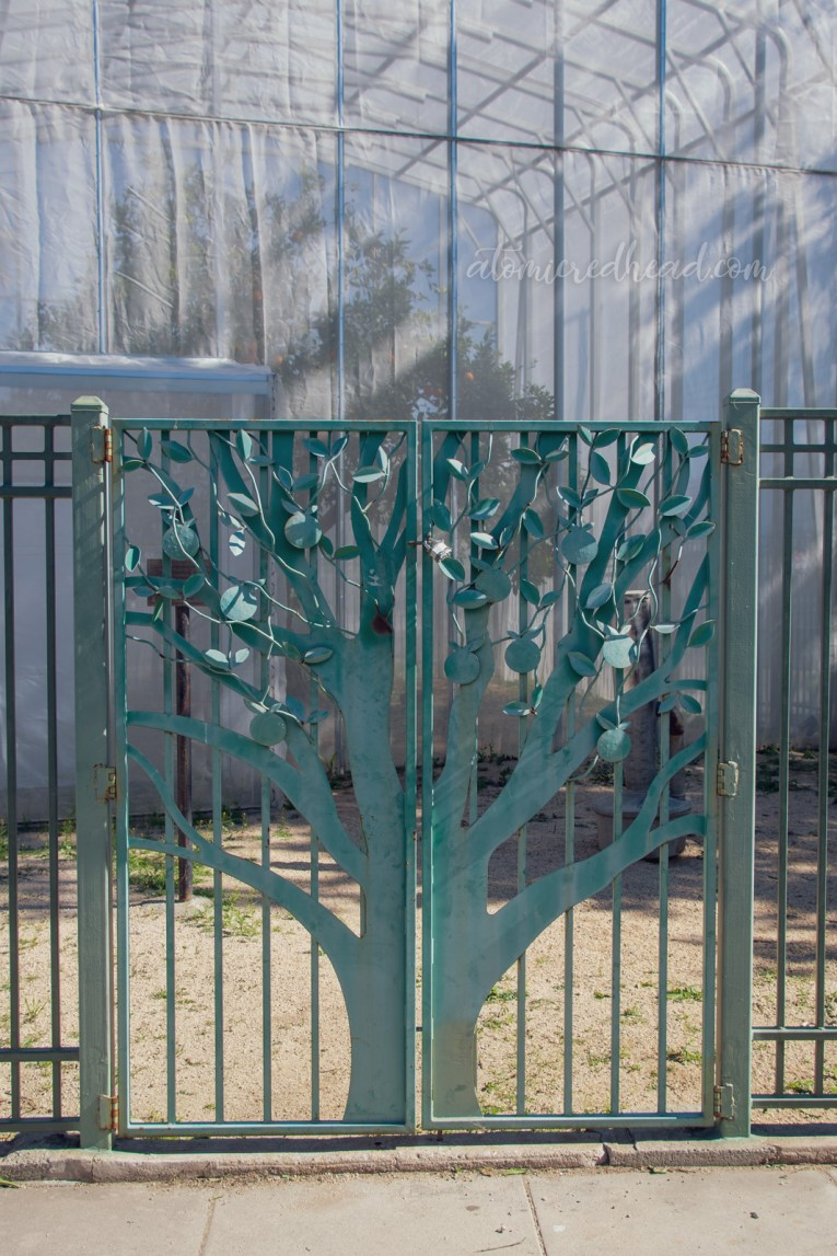 The gate to the first navel orange tree, which has iron work that looks like an orange tree.