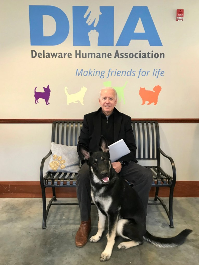 "Joe Biden sits on a bench with his new dog, Major. On the wall large blue letters read ""DHA"" below in smaller lettering reads ""Delaware Human Association Making friends for life."""