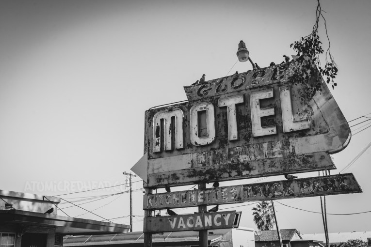 Black and white photo of the sign for the Globe Motel. Pigeons have made the sign their home, with a variety of them sitting atop. A faded and flaking arrow points toward the rooftops of the motorcourt style motel.