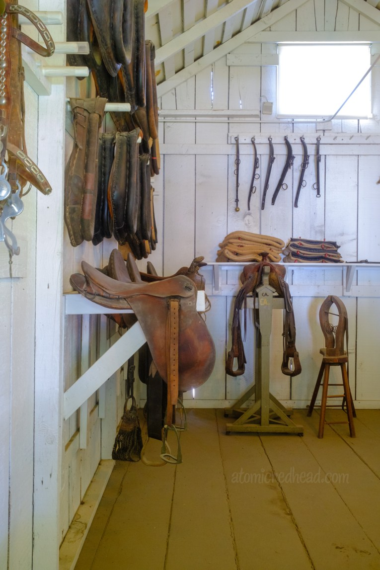 Interior of the saddle shop, with an array of saddles, horse collars, and tools for making saddles and other horse equipment.