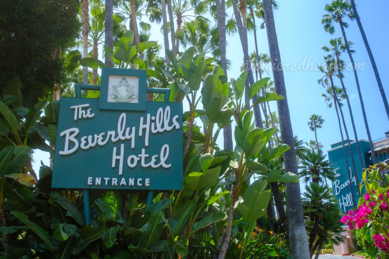 """Sign for the Beverly Hills Hotel, green with a script reading """"The Beverly Hills Hotel Entrance"""" Lush banana leaves and palms behind."""