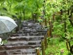 アトピー梅雨時期の肌ケアと生活スタイル