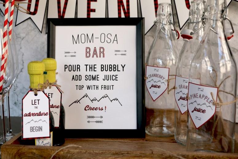Wilderness Baby Shower Mimosa Bar