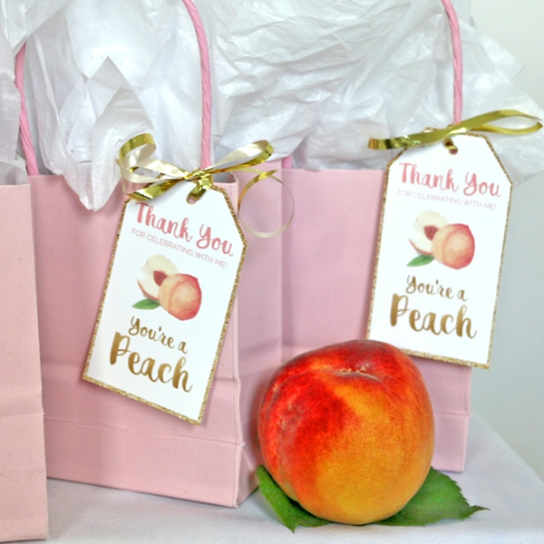Peach Party Birthday Favor Tag