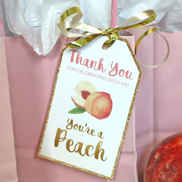 Peach Party Birthday Favor Tags