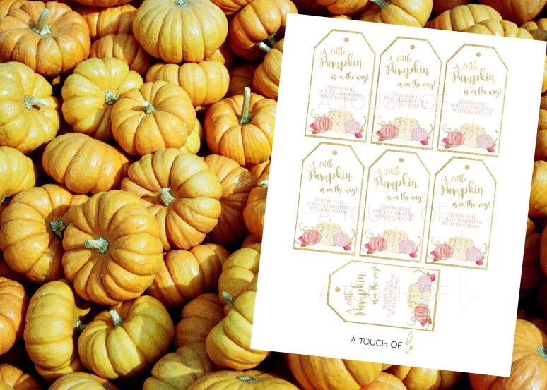 A Little Pumpkin is On The Way Printable Favor Tags