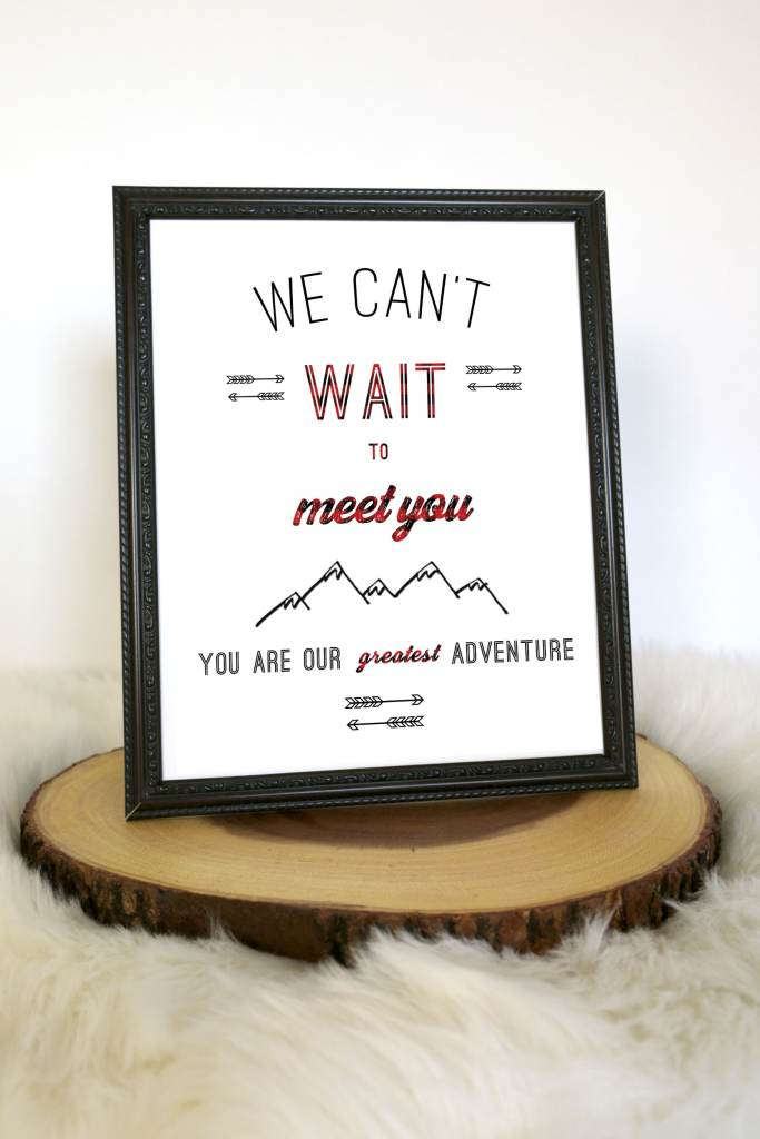 Buffalo Plaid Baby Shower Decor: We can't wait to meet you sign