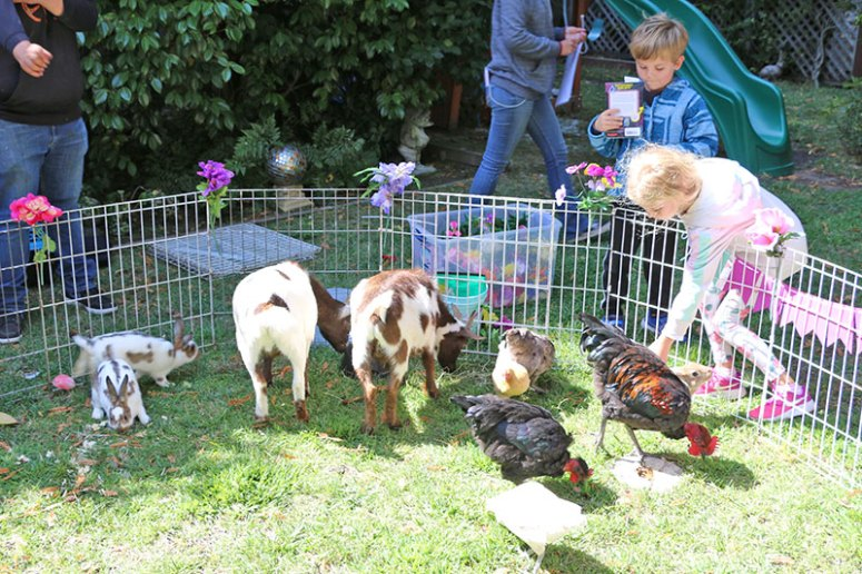 Paw Patrol Party Petting Zoo