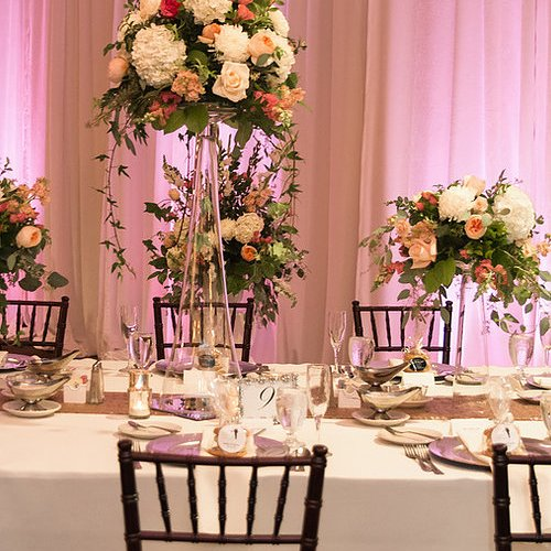Image of Mahogany Chiavari Chair Rentals