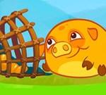 Mango Piggy Piggy Farm Harvest