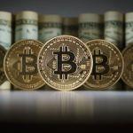 Harvard University professor predicts Bitcoin price collapse