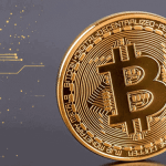 Bitcoin Price Holds above $8000