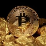 Investor's Guide to Bitcoin Gold Hard Fork