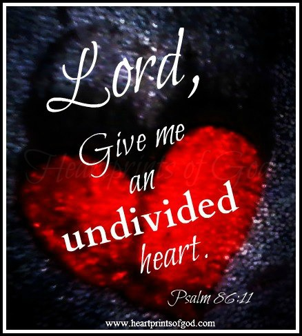 Image result for undivided heart