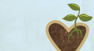 Image result for cultivate heart
