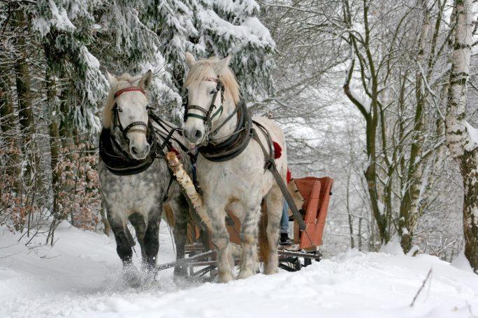 sleigh ride new year atozmomm.com