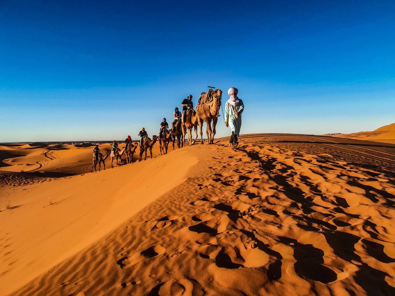 jacob flees on camels home www.atozmomm.com