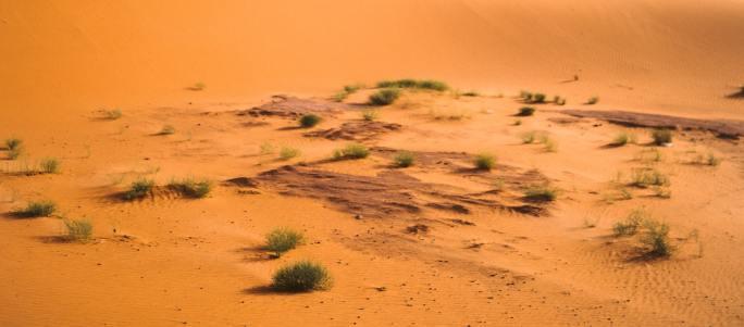 jacob travels to egypt www.atozmomm.com