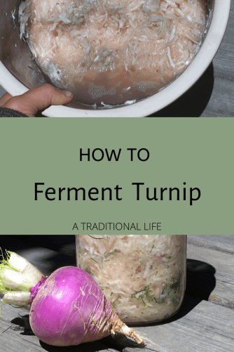 Healthy turnip recipe with dill