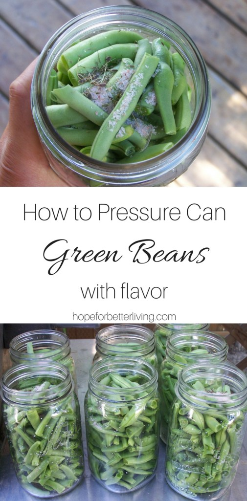 I almost gave up on pressure canning green beans. And then, I started putting them up this way. I decided they could stay!