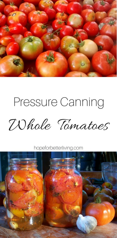 Pressure canning whole tomatoes was never easier! With this simple recipe, you'll whip through a batch in no time!