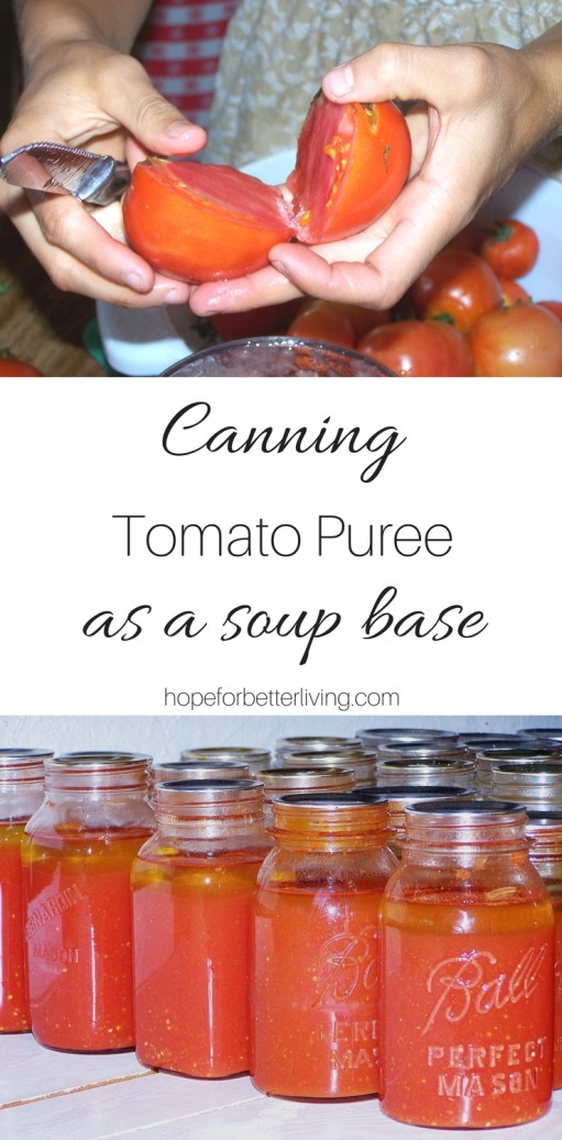 Canning tomatoes never went faster! Learn how to preserve puree for your winter soups!