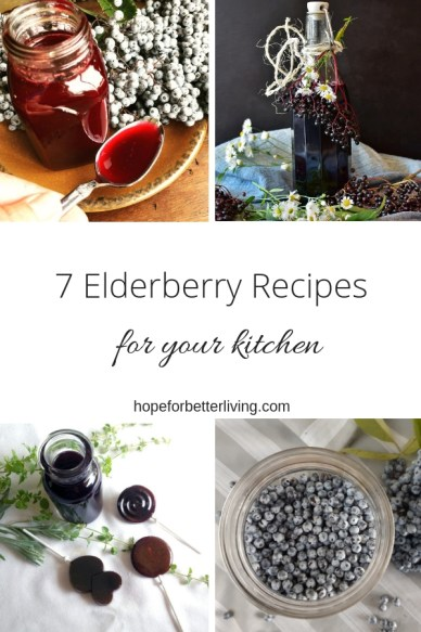 Looking ways to bring the immune boosting elderberry into your home? Here's a roundup of recipes for your convenience and your kitchen!