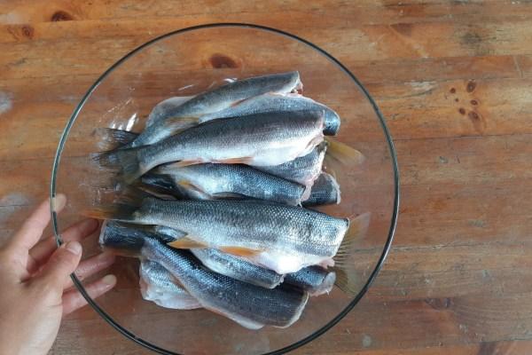 Pressure Canning Fish