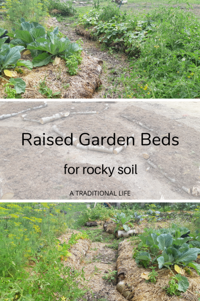 How to Build Raised Permaculture Garden Beds