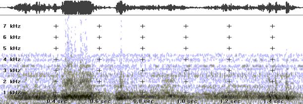 cgula2004_voice_analysis_3