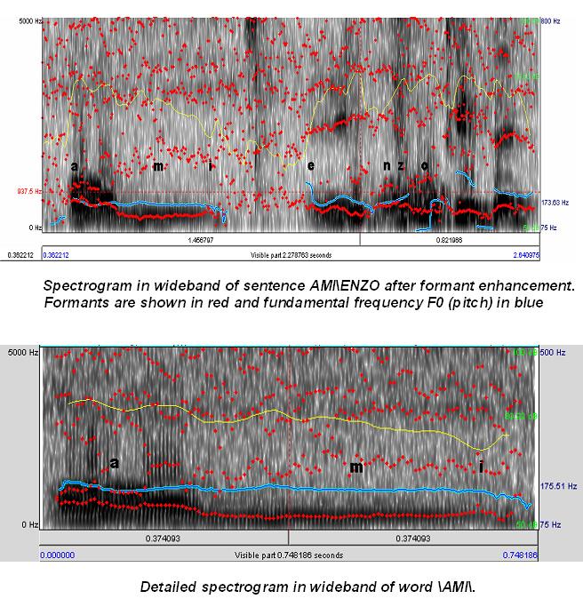 il_laboratorio_voice_graph