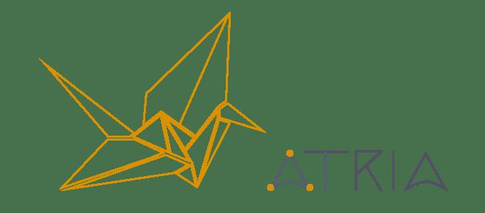 Atria Consultora: estrategias en gestión de información