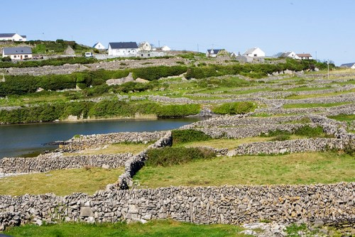 Stone walls in Co. Clare. (credit: mirsasha/Flickr via creative commons license)