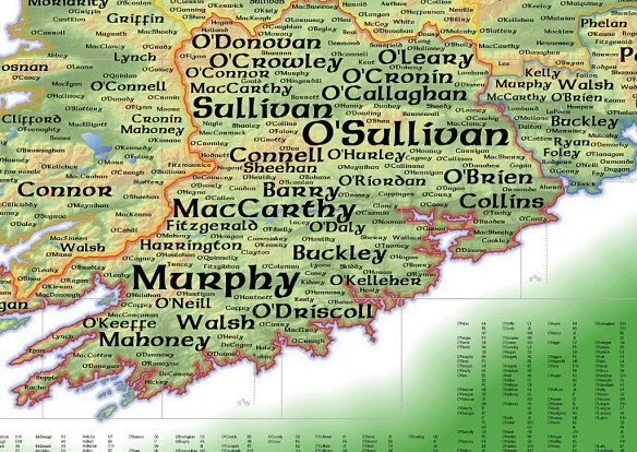 What's in a Name? Decoding the Rules of Irish-Language Names