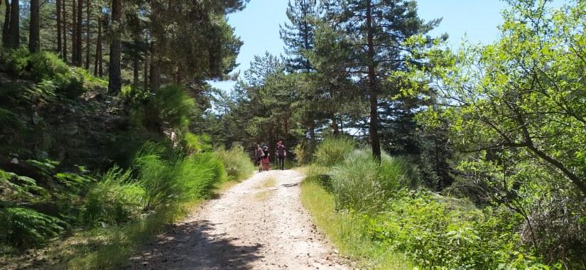 Trekking en Guadarrama de dos días